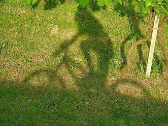 Bambina-in-bicicletta